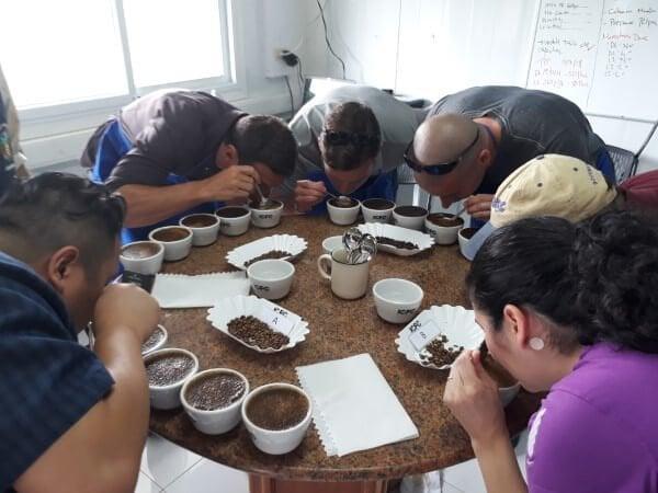 Specialty Coffee Farm Tour