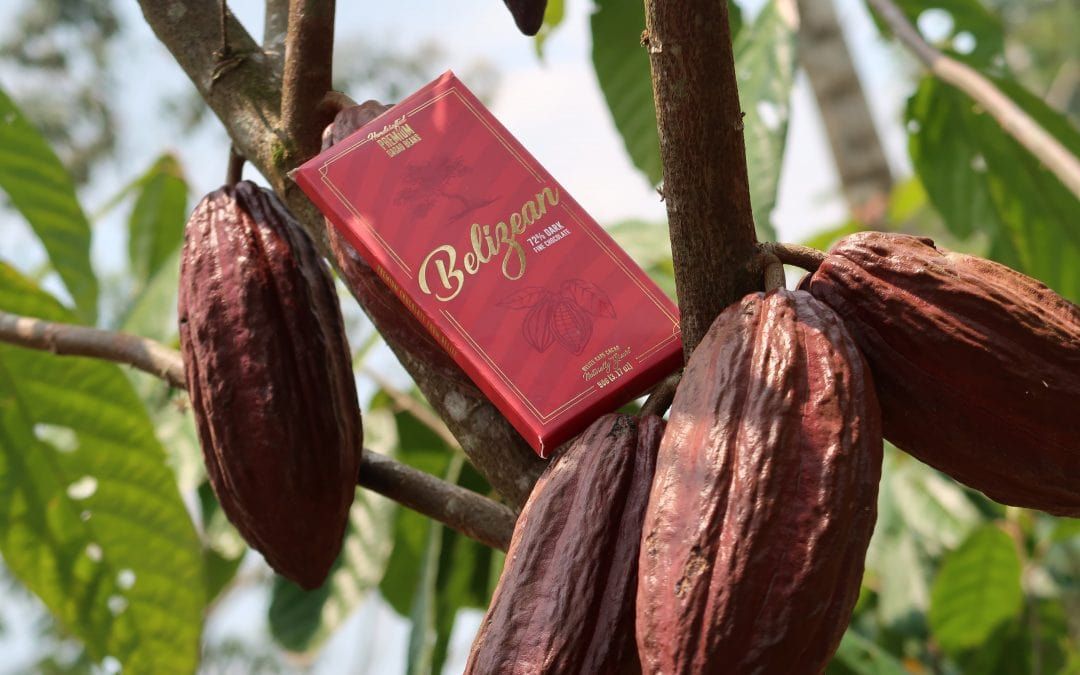 CURRENT BELIZE CACAO PARCEL OFFERING IS CLOSING