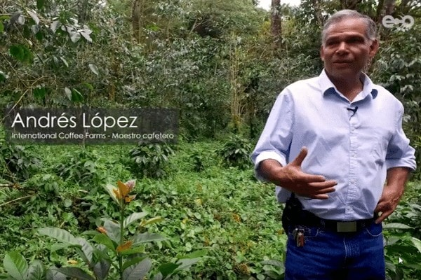 Andres Lopez - International Coffee Farms