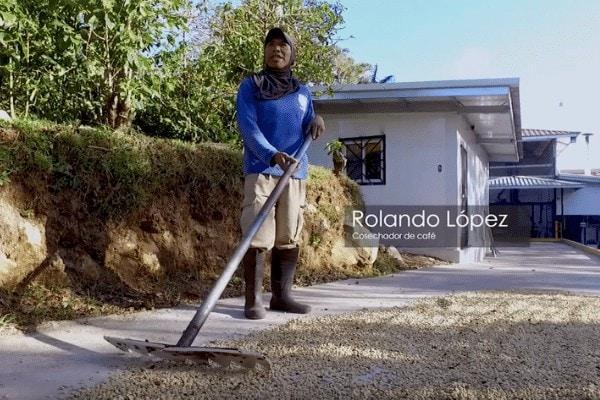 Rolando Lopez - Fincas Cafeteras Internacionales